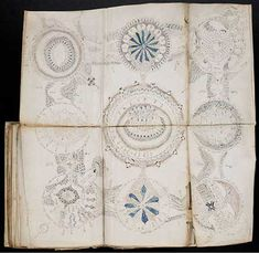 "The Voynich Manuscript -The Voynich Manuscript has been dubbed ""The Most Mysterious Manuscript in the World"". It is considered a Manuscript codex and dates to the early 15th century (1404-1438), possibly created in northern Italy"