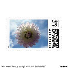 white dahlia postage stamps