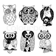 Vector of 'Collection of six different owls'