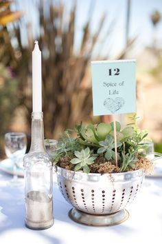 succulent centerpiece in a colander. Cheap & beautiful for weddings!