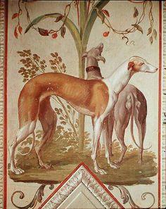 Two Greyhounds (mural), Pietro Rotati Galleria Borghese, Rome Greyhound Kunst, Lurcher, Grey Hound Dog, Dog Paintings, Italian Greyhound, Whippets, Beautiful Dogs, Dog Art, Kitsch