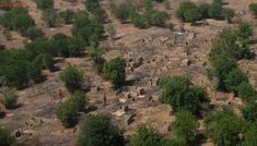 Suposto ataque do Boko Haram na Nigéria deixa 4 mortos