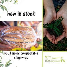 Amazing Greens, Sustainable Living, Compost, Sustainability, Eco Friendly, The 100, Household, Rolls, Environment