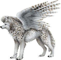 Wolf_weiß_geflügelt