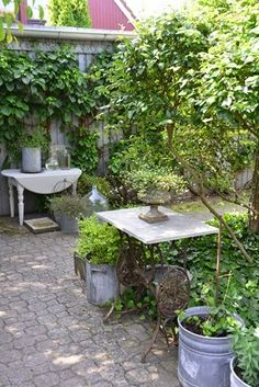 Garden, pavers, plants, pots and tables
