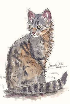 Feline Attitude. Line and wash sketch of a cat, by Marinda Daly. Sketched with black waterproof pen, and colored with Daler Rowney Artists' Water Color paints.