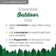 essential-oils-outdoor