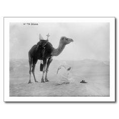 Mann mit Kamel in der Sahara-Wüsten-Fotografie Postkarten