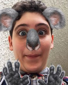 Un Koala in fugaaaa🐨