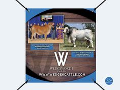 Print Design, Logo Design, Graphic Design, Web Design Quotes, Vinyl Banners, Upcoming Events, Cattle, Signage, Ranch