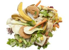 Global Food Waste Now At Shamefully High Levels