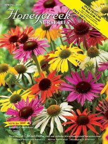 Honeycreek Nurseries Website Spring Hill Nursery Sun Perennials Plants Online Drought Tolerant