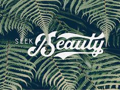 Seek Beauty by Nicolas Fredrickson