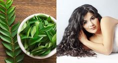 Use of Curry Leaves to Stop Hair Loss Naturally at Home