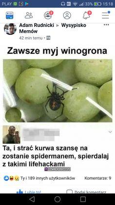 Wysypisko memów.Spiderman Best Memes, Dankest Memes, Jokes, Polish Memes, Funny Mems, Httyd, Wtf Funny, Funny Photos, Humor
