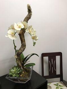 Arreglo con una Orquídea y suculentas. Arrangement with an Orchid and succulents. Orchid Flower Arrangements, Artificial Floral Arrangements, Ikebana Flower Arrangement, Ikebana Arrangements, Phalaenopsis Orchid, Orchid Plants, House Plants Decor, Plant Decor, Growing Orchids