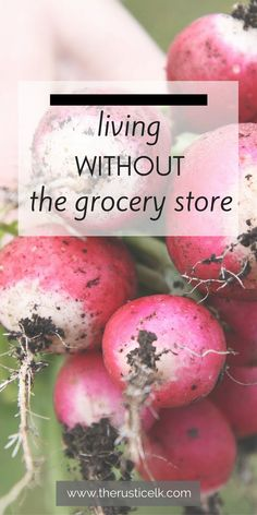 Living Without the Grocery Store- Are you ready to be more independent and self-sufficient? Seeking more sustainable ways to buy your groceries? Here are 20 fantastic tips to keep you out of the supermarket and get fresh, real, food! Homestead Farm, Homestead Survival, Survival Prepping, Survival Skills, Survival Essentials, Homestead Living, Survival Shelter, Camping Survival, Emergency Preparedness