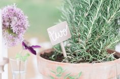 Herb table numbers | Chris Loring Photography | see more on: http://burnettsboards.com/2015/12/roots-shoot-an-elegant-organic-farm-wedding/