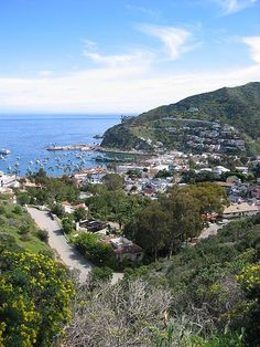 Catalina Island is just 22 miles off the coast of Southern California and offers many activities for visitors, from scuba diving, snorkeling, parasailing, kayaking or fishing to hiking, biking, playing golf or exploring charming shops and galleries. #travel #Catalina