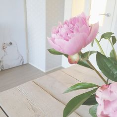 Having a slow start and getting ready for a trip to Nijmegen, the opening of @helladuijs's new studio and shop. #slowstart #lazysaturday #weekend #peonies #pink #flowers #interior #styling #myrealliving #groovymagnets