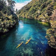 "tentree: ""Exploring the crystal clear waters of Abel Tasman National Park | PC: @lebackpacker"""