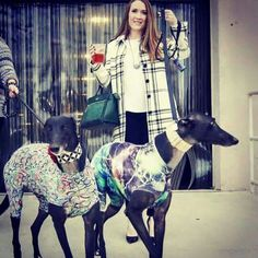 Mischie and Ben were recently spotted out on the town. Don't they look handsome in their coats?? #galtx #greyhounds