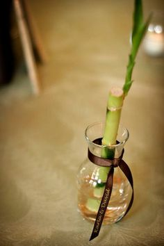 Lucky bamboo stalk in vases with personalized ribbons-nice favor idea.