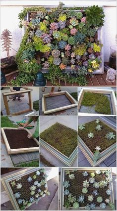 Cool Succulent Planter Ideas for Your Home 610 Cool Succulent Planter Ideas for Your Home 6 Plant Wall Art Artificial Plant Succulent Wall Art Succulent Wall Planter, Succulent Frame, Vertical Succulent Gardens, Succulent Gardening, Succulent Ideas, Succulent Tattoo, Succulent Outdoor, Vertical Pallet Garden, Vertical Planter