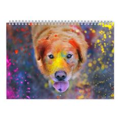 Golden Retriever 2017 Calendar