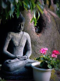 Serenity in the garden - #Buddha statue