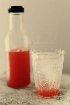 Strawberry Rhubarb Soda
