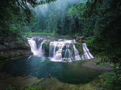 Gifford Pinchot National Forest Washington