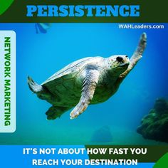 Persistence is what pays off in the long run. There's no race to the finish! Consistent long term effort is what leads to financial freedom.  #acn #countrygourmethome #directsales #entrepreneur #isagenix #javita #liasophia #mlm #mca #networkmarketing #organogold #pamperedchef #mobe #scentsy #totallifechanges #thrivelife #wahm