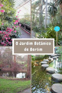 Que tal sair do óbvio e visitar o Jardim Botânico de Berlim, administrado pela Universidade Livre da cidade? Um passeio gostoso e interessante para fazer em qualquer época do ano!