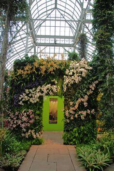 New York Botanical Garden, Orchid Show by Patrick Blanc, Phalaenopsis Gate