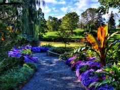 Illinois(Botanic Garden,Chicago)
