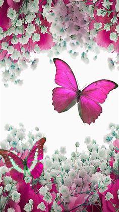 Beautiful Nature Wallpaper, Love Wallpaper, Galaxy Wallpaper, Wallpaper Backgrounds, Blue Butterfly Wallpaper, Butterfly Flowers, Paper Butterflies, Beautiful Butterflies, Cellphone Wallpaper