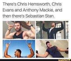 avengers, marvel, chrisevans, chrishemsworth, sebastianstan