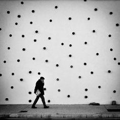 Where is my Dalmatian ? | Flickr: partage de photos!