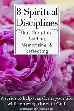 8 Spiritual Disciplines: One-Scripture Reading, Memorizing, & Reflecting-check out these tips to help you start reading,memorizing, and reflecting on God's word. Spiritual Growth Quotes, Spiritual Life, Christian Living, Christian Life, Christian Women, Bible Reader, Spiritual Disciplines, Spiritual Practices, Wealth Affirmations