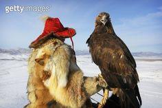 Kazakh golden eagle hunter & eagle