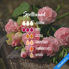 Spellbound - Essential Oil Diffuser Blend