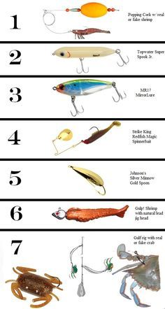 Best Baits For Redfish