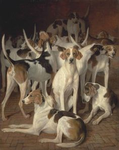Hounds in a Kennel by Jaques - Laurent Agasse