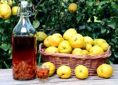 Ingrediente : un kilogram de gutui coapte, un kilogram de zahăr, un litru alcool dublu rafinat (80-96 de grade), tuică de casă (pentru diluat), scortisoară sau vanilie (optional) Mod de preparare Se spală bine gutuile, se curătă de cotor, se scot semintele si se taie in bucăti mărunte. Bucătile de gutui se pun intr-o damigeană, … Irish Cream, Soul Food, Pear, Food And Drink, Cooking Recipes, Apple, Homemade, Drinks, Foods