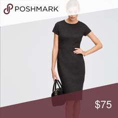 Ann Taylor gray ponte short sleeve dress Short sleeve ponte dress, thicker jersey material with some stretch   Dark charcoal color Ann Taylor Dresses Midi