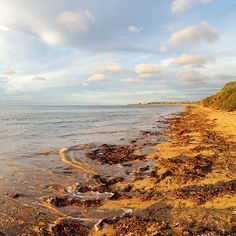 Known as Buttons Beach, this stretch of sand is adjacent to the township butting up against the coastal Bicentennial Park and faces onto Bass Strait. Image credit: @terryjohngallery