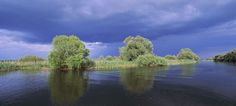 Romania - Danube Delta  - Explore the World with Travel Nerd Nici, one Country at a Time. http://travelnerdnici.com