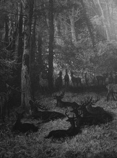 """transylmania: """" By Gustave Doré """""""