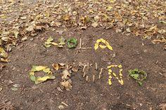 Una propuesta familiar estacional que nos invita a caminar, a observar y recolectar... para después, construir juntos nuestro telar del otoño. In Natura, Plants, Walking, Proposal, Loom, Naturaleza, Plant, Planets